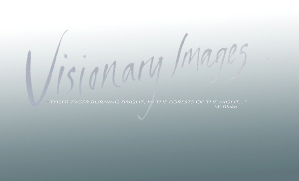 "Visionary Images showcases the artwork by artist Jill Carter-Hansen, including Peace Posters, original screensavers, prints, illustrations, paintings, animations and photography. ""TYGER TYGER BURNING BRIGHT, IN THE FORESTS OF THE NIGHT"" - WILLIAM BLAKE"